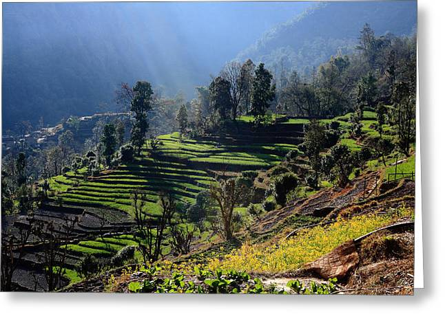 Moran Greeting Cards - Himalayan Stepped Fields - Nepal Greeting Card by Aidan Moran