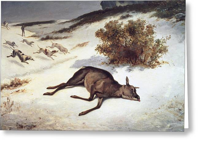 Hound Hounds Greeting Cards - Hind Forced Down In The Snow Greeting Card by Gustave Courbet