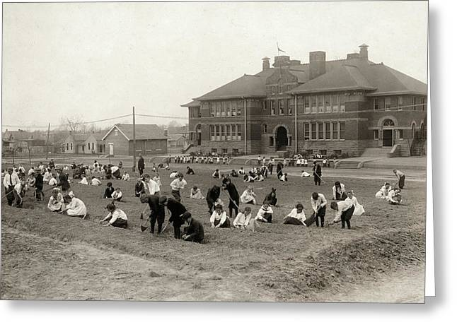 Hine School Garden, 1917 Greeting Card by Granger
