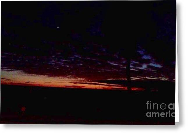 Paradise Road Greeting Cards - Hint of Dawn Greeting Card by Melissa Darnell Glowacki