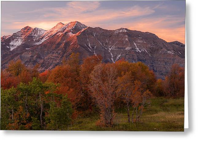 Utah Greeting Cards - Hint of Fall Greeting Card by Chad Dutson