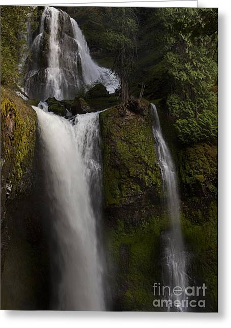 Waterfall Image Greeting Cards - Hint of Light Greeting Card by Keith Kapple