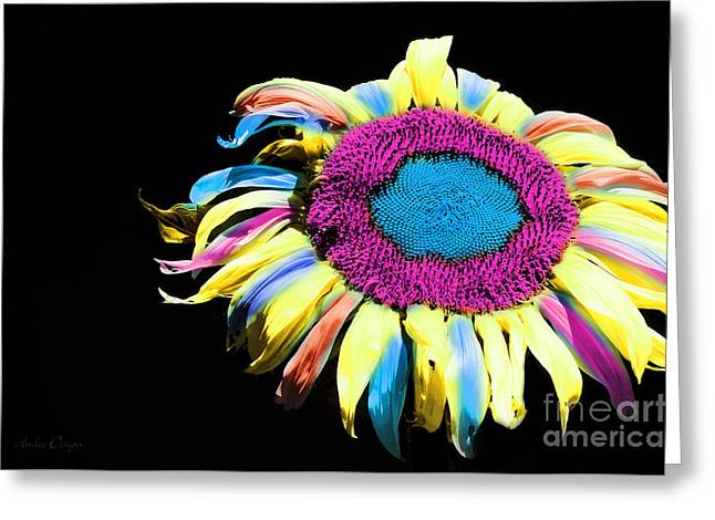 Single Mixed Media Greeting Cards - Hippie Sunflower Rainbow Painterly Greeting Card by Andee Design