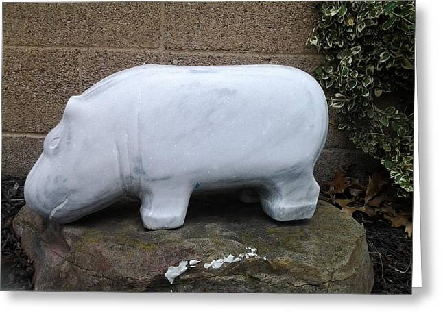 Marble Sculptures Greeting Cards - Hippo Greeting Card by Edwin A Ziarko