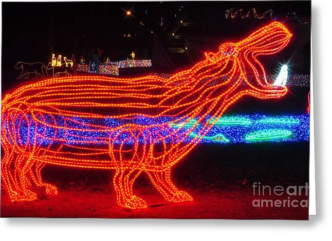 Christmas Lights Greeting Cards - Hippo Greeting Card by Mandy Judson