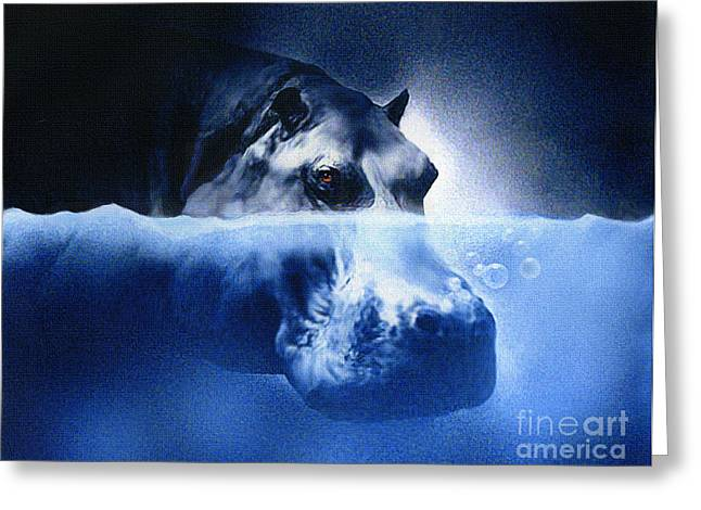 Hippopotamus Digital Greeting Cards - Hippo Greeting Card by Robert Foster