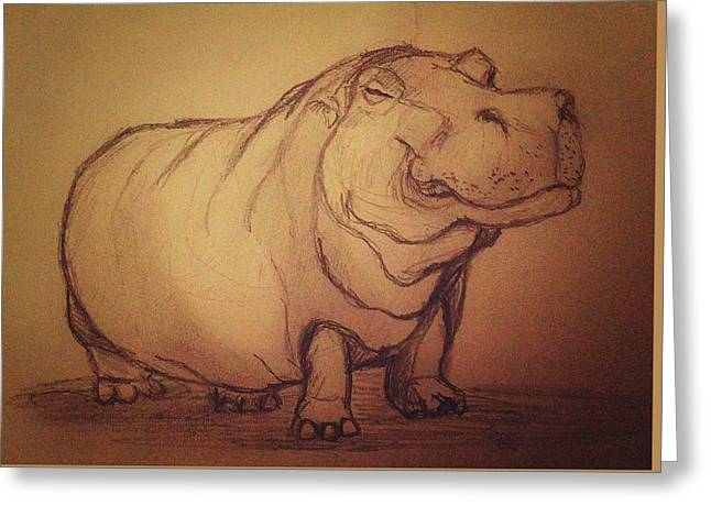 Hippopotamus Drawings Greeting Cards - Hippo Greeting Card by Vineeth Menon