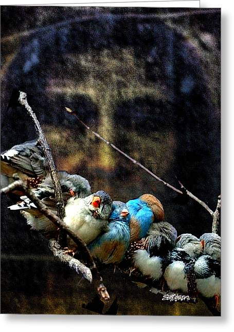 Seth Weaver Greeting Cards - His Eye Is On The Sparrow Greeting Card by Seth Weaver
