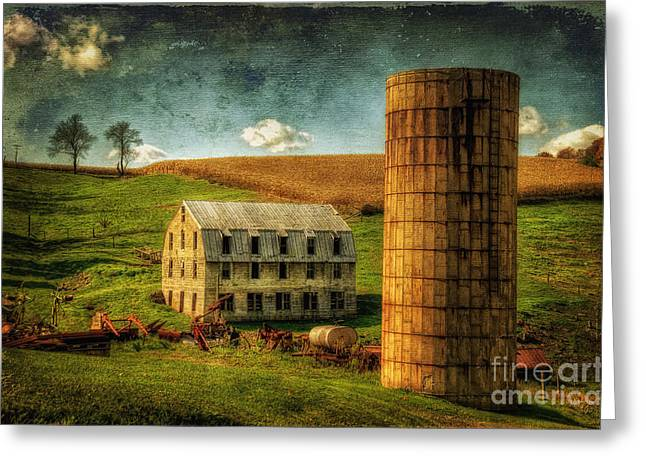 White Barns Greeting Cards - His Pride And Joy Greeting Card by Lois Bryan