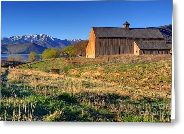 Heber Springs Greeting Cards - Historic Francis Tate Barn - Wasatch Mountains Greeting Card by Gary Whitton