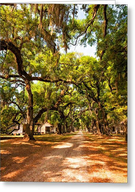 Historic Lane 2 Greeting Card by Steve Harrington