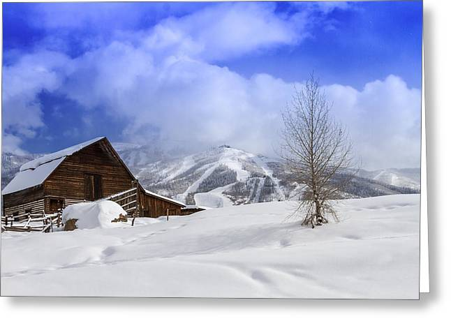 Historic Steamboat Springs Barn Greeting Card by Teri Virbickis