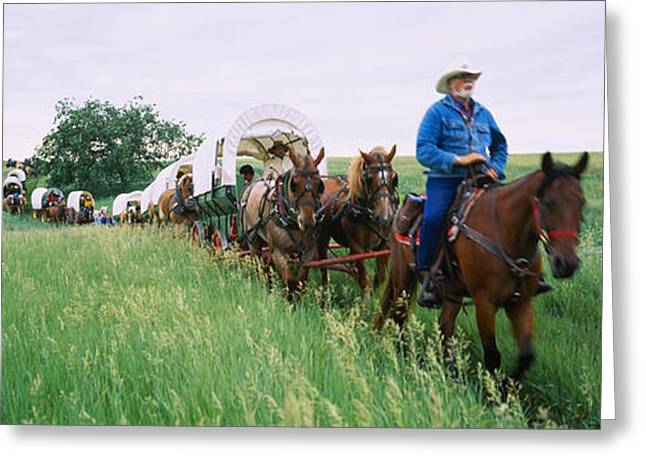 Working Cowboy Photographs Greeting Cards - Historical Reenactment Of Covered Greeting Card by Panoramic Images