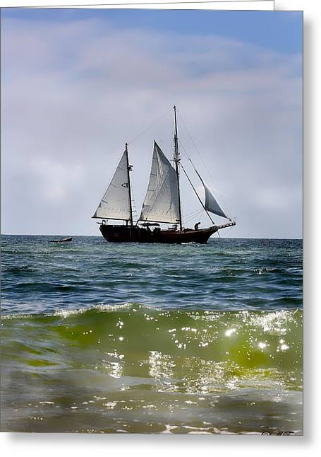 Blue Green Water Greeting Cards - Historical Sailboat Greeting Card by Debra Forand