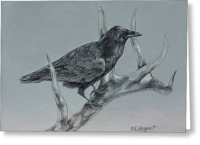 Raven Drawings Greeting Cards - Hitchhiker Drawing Greeting Card by Derrick Higgins