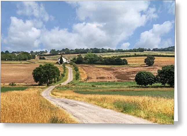 Harvest Time Photographs Greeting Cards - The Long Winding Road  Greeting Card by Gill Billington