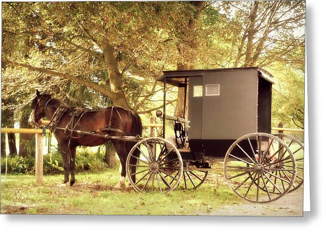 Horse And Cart Greeting Cards - Hitching Post Greeting Card by Crystal DiGiacomo
