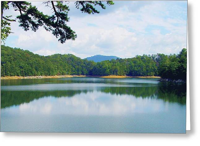 Bluish Green Greeting Cards - Hiwassee Lake Greeting Card by Robert J Andler