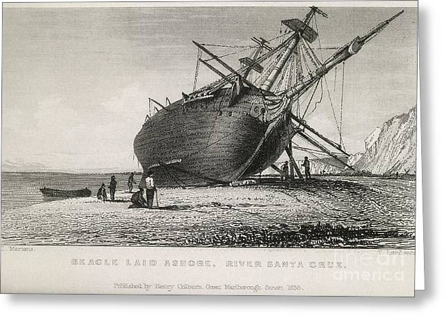 Recently Sold -  - Surveying Greeting Cards - Hms Beagle Laid Ashore, River Santa Greeting Card by British Library