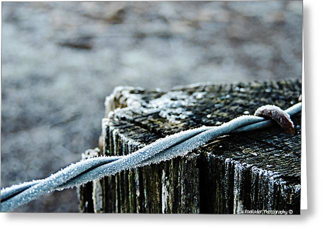 Replacing Greeting Cards - Hoar Frost at Sun Up Greeting Card by Roe Rader