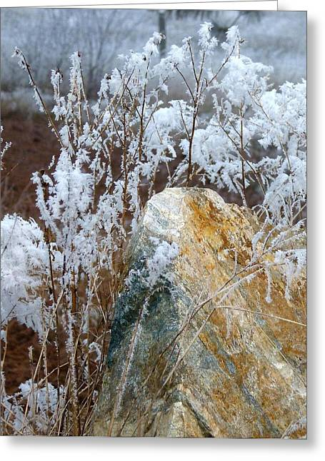 Ice Fog Greeting Cards - Hoarfrost 23 Greeting Card by Will Borden