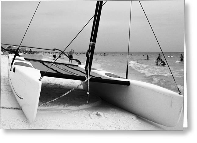 Blue Sailboats Greeting Cards - Hobie for Rent Greeting Card by Jeff Mize