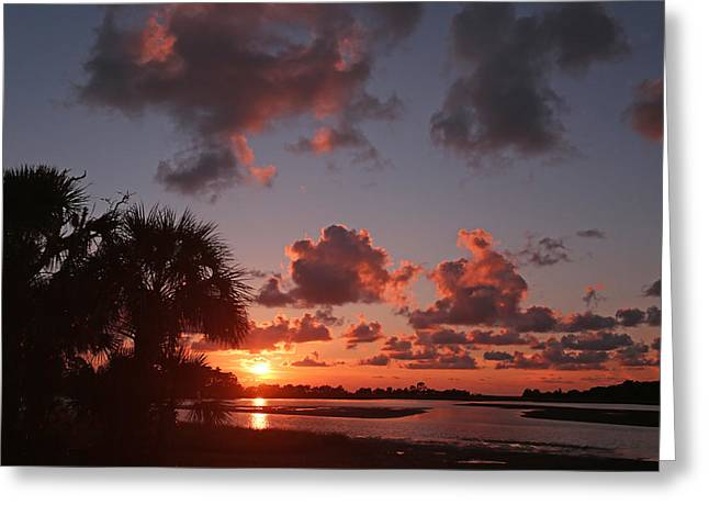 Cedar Key Greeting Cards - Hog Island Sunset Greeting Card by Jean Clark
