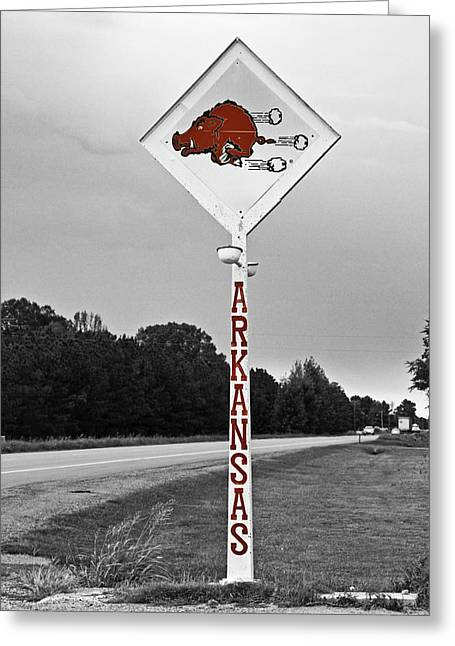 Hogs Greeting Cards - Hog Sign Greeting Card by Scott Pellegrin