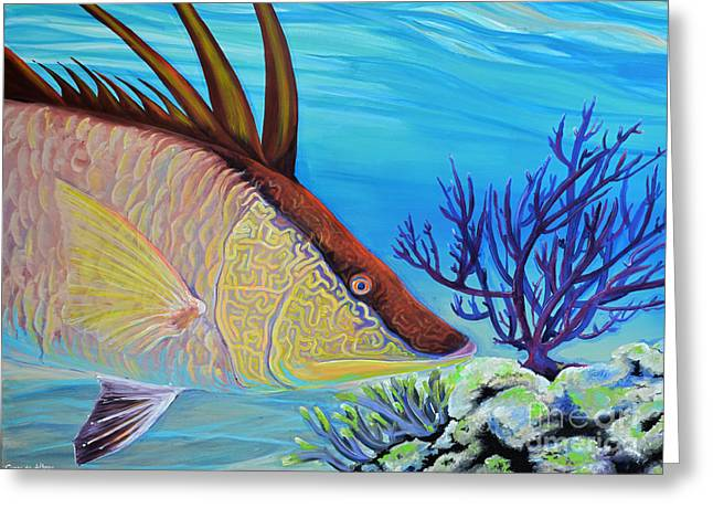 Hog Fan Greeting Cards - Hogfish Greeting Card by Paola Correa de Albury
