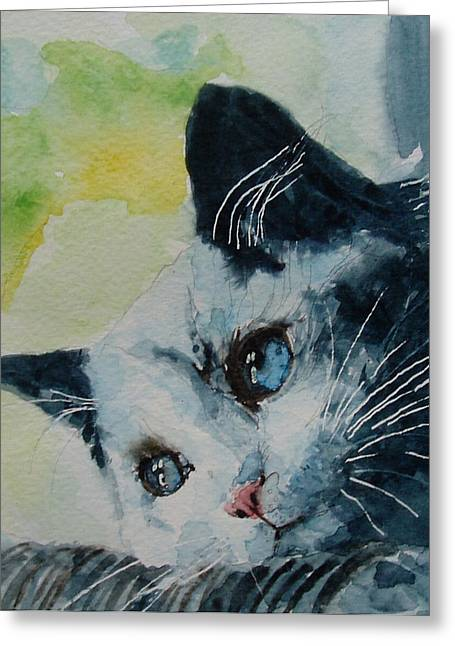 Kitten Greeting Cards - Hold me closer tiny dancer Greeting Card by Paul Lovering