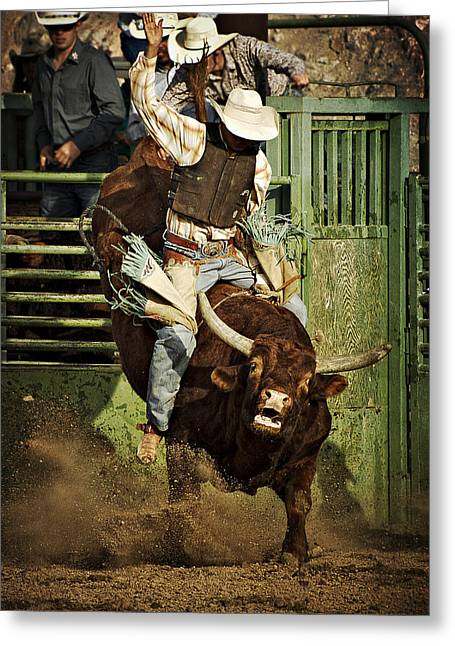 Bull Rider Art Greeting Cards - Hold On Greeting Card by Priscilla Burgers