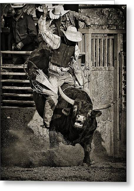 Bull Rider Art Greeting Cards - Hold On-sepia Greeting Card by Priscilla Burgers