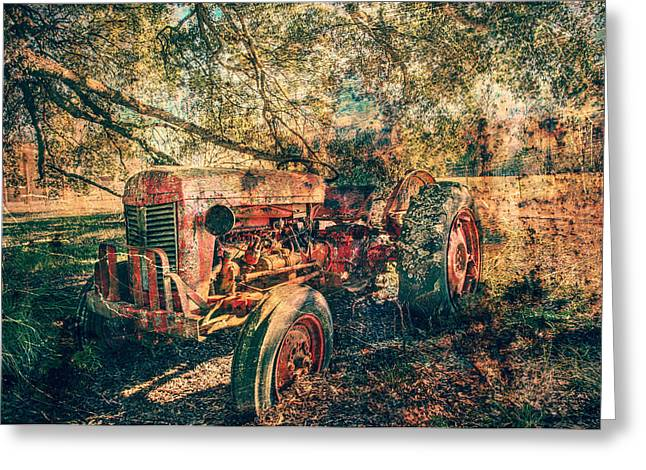 Hdr Landscape Mixed Media Greeting Cards - Holdin on Greeting Card by Mark Hazelton