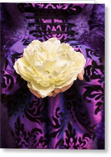 Ivory Flower Greeting Cards - Holding Rose Greeting Card by Amanda And Christopher Elwell