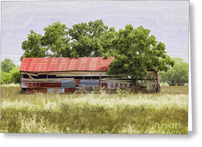 Barn Yard Greeting Cards - Holding Together painterly Greeting Card by TN Fairey