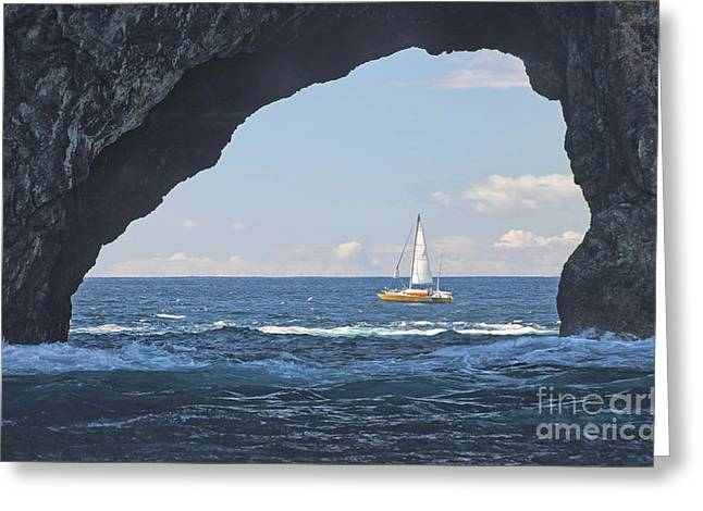 Yellow Sailboats Greeting Cards - Hole in Rock Bay of Islands Greeting Card by Loriannah Hespe