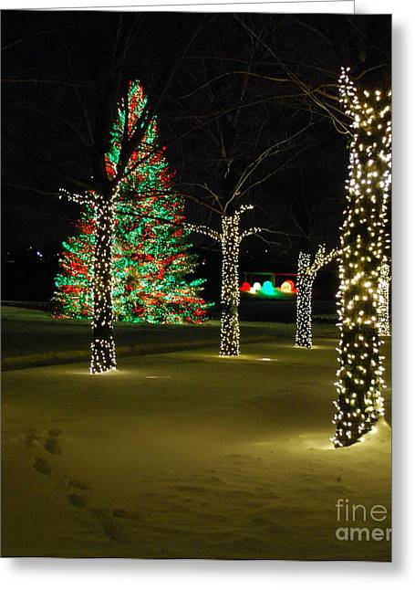 Holiday Lights At Chicago Botanic Garden Greeting Card by Nancy Mueller