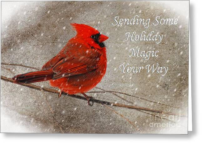 Red Bird In Snow Greeting Cards - Holiday Magic Cardinal Card Greeting Card by Lois Bryan