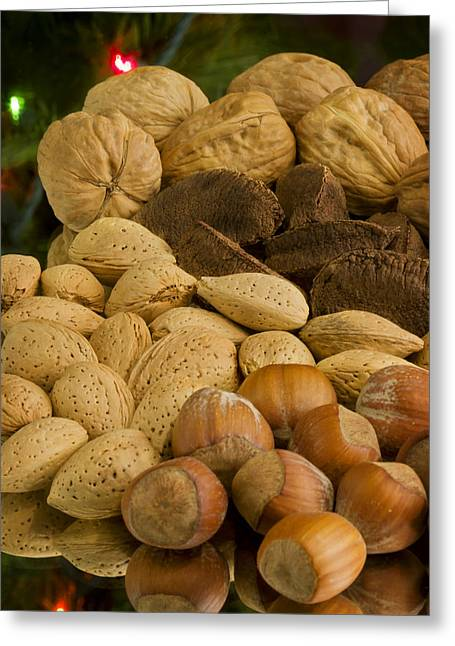 Shell Texture Greeting Cards - Holiday Nuts Greeting Card by Mark McKinney