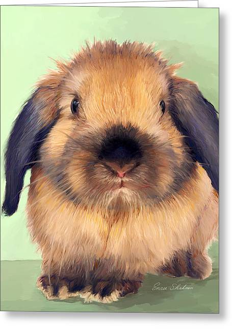 Rabbit Greeting Cards - Holland Lop Greeting Card by Enzie Shahmiri