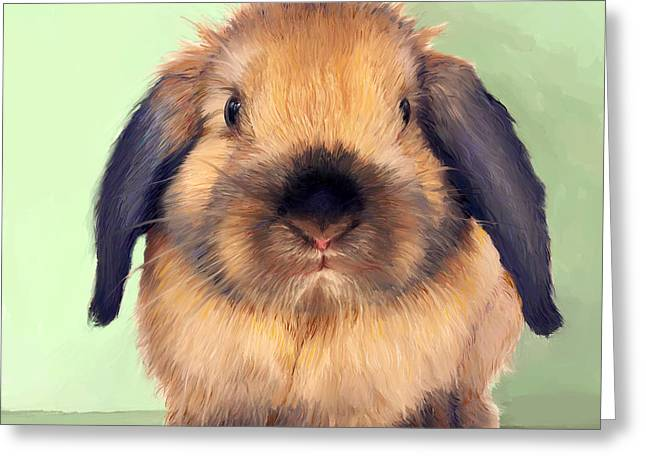 Rabbit Greeting Cards - Holland Lop Greeting Card by Enzie Shahmiri