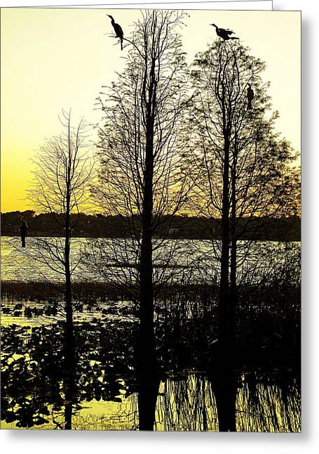 Laurie Perry Greeting Cards - Hollingsworth Reflections Greeting Card by Laurie Perry