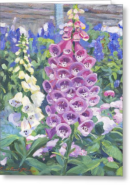 Hollyhocks Greeting Cards - Foxglove Greeting Card by David Lloyd Glover