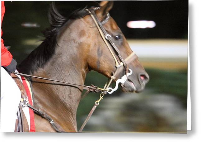 Games Greeting Cards - Hollywood Casino at Charles Town Races - 121254 Greeting Card by DC Photographer