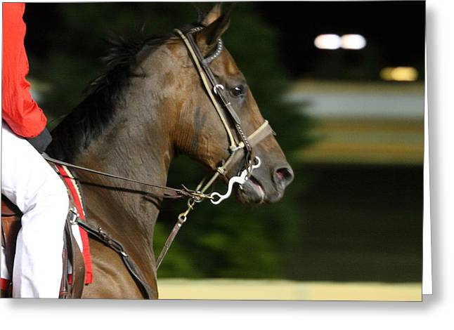 Horse Photographs Greeting Cards - Hollywood Casino at Charles Town Races - 121255 Greeting Card by DC Photographer