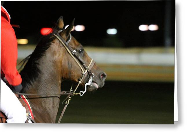 Betting Greeting Cards - Hollywood Casino at Charles Town Races - 121256 Greeting Card by DC Photographer