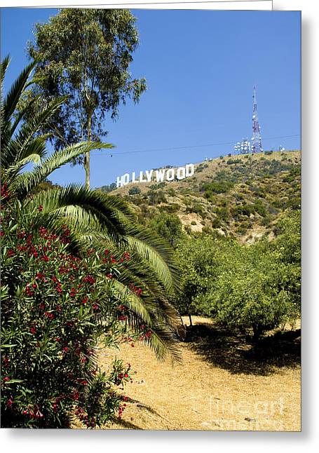 Plant Hollywood Greeting Cards - Hollywood sign 6 Greeting Card by Micah May