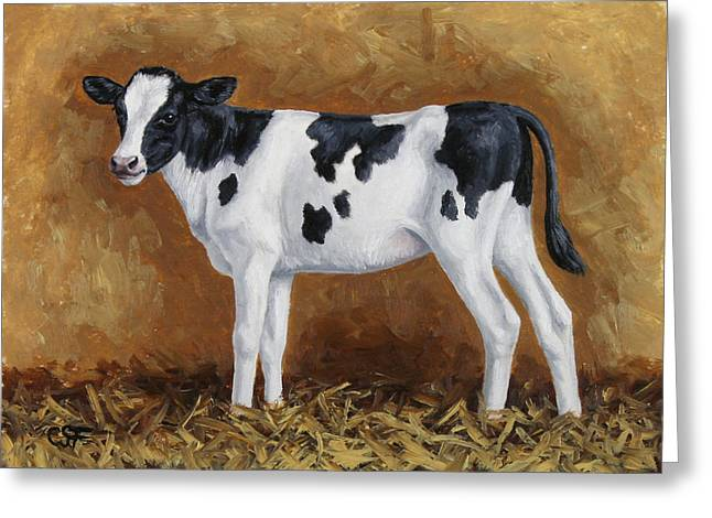 Dairy Barn Greeting Cards - Holstein Calf Greeting Card by Crista Forest