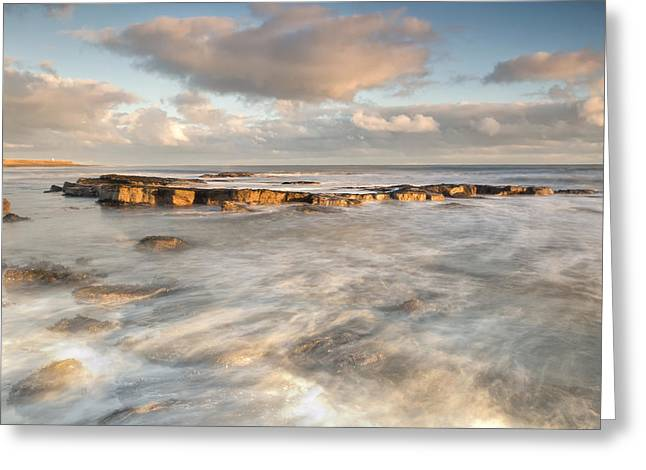 Farne Islands Greeting Cards - Holy Island Ledge Greeting Card by Chris Frost