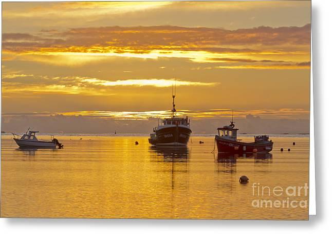Farne Islands Greeting Cards - Holy Island November Sunrise Greeting Card by John Potter